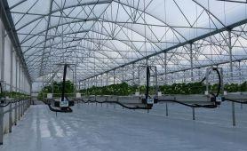 Inauguration de 8400 m² de serres