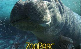 Zoo de BEAUVAL : la réserve des hippopotames