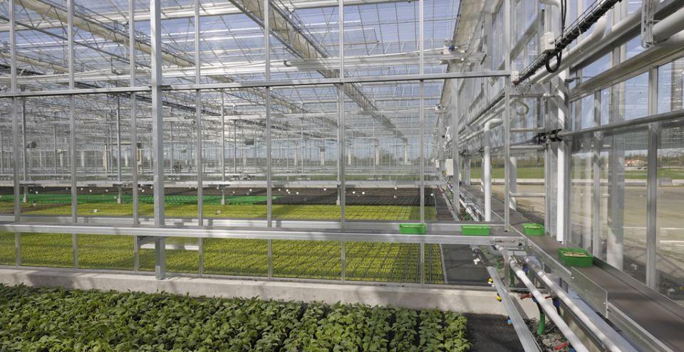 Serre horticulture intérieur