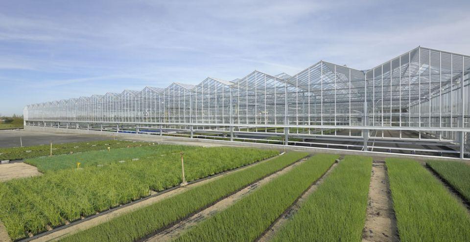 Extérieur serre de grande portée_Horticulture choletaise