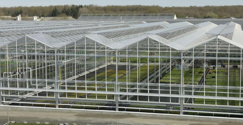 Serre en verre de grande portée_Horticulture choletaise