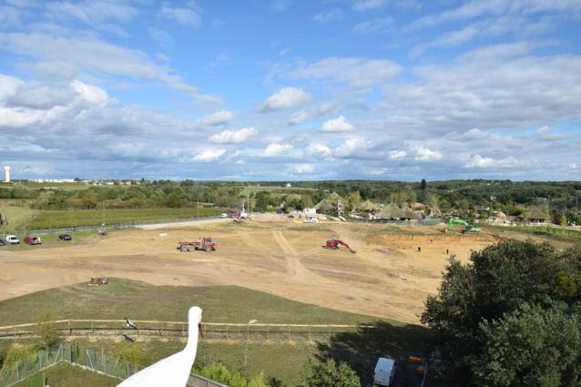 ZooParc-de-Beauval-2017-09-19