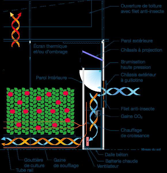 Schéma technique Tomate - Concombre - Poivron